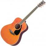ホンマでっかTV×綾野剛:ギターの練習方法?住んだほうがいい場所は?